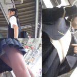 【埼玉】通学中の女子中学生、電車で男に触られる